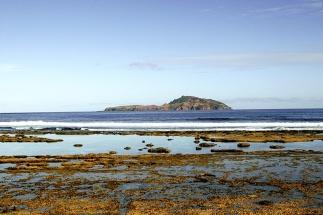 Phillip Island W