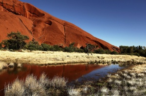 ULURU REFLECTION