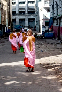 Young Nun in Central Yangon