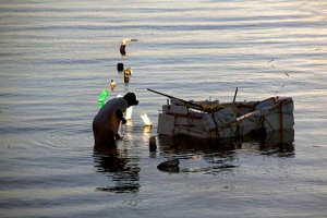 Seaweed Harvesting off Lembongan Beach